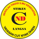 STIKES Cut Nyak Dhien Langsa