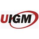 Universitas Indo Global Mandiri